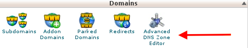 Advanced DNS Zone Editor